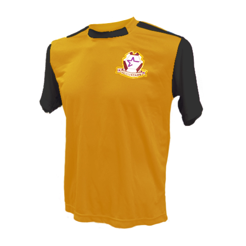 b39dc381d93 Gold / Black Jersey - Locations: El Mirage, Boone & Lee Elementary ...