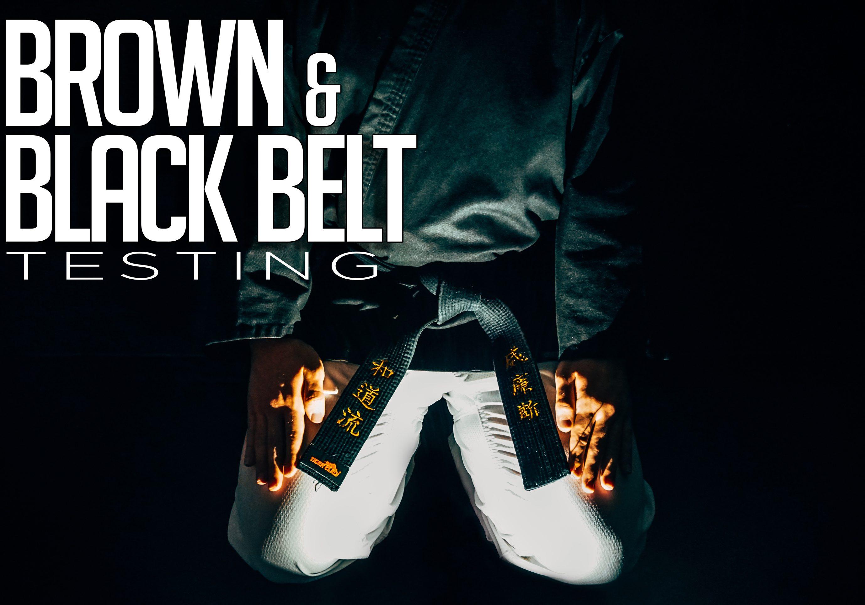 Brown & Black Belt Testing